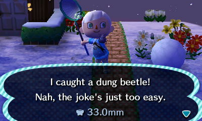 File:Dung Beetle New Leaf caught.JPG