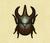 Escarabajo astado atlas NH