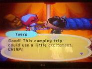 Twirp Camper