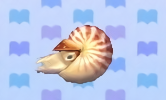 Chambered nautilus encyclopedia (New Leaf)