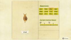 NH-encyclopedia-Snail