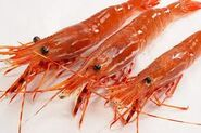 Real sweet shrimp