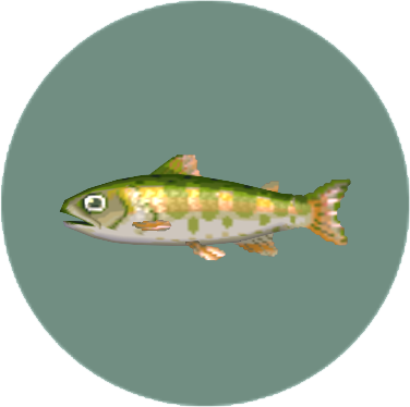 Cherry Salmon (City Folk)