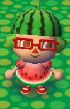 Watermelon Look