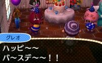 Rasher ACNL Villager Birthday