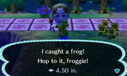 Frogcatchnl
