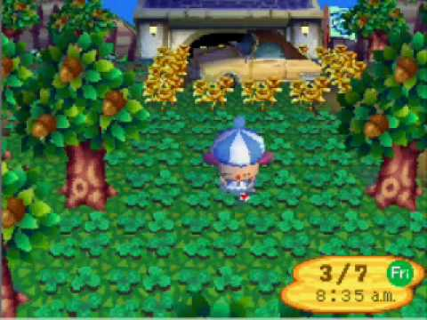 Seed (hacking) | Animal Crossing Wiki | FANDOM powered by Wikia