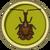 Escarabajo Violín
