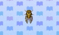 Walker cicada encyclopedia (New Leaf)