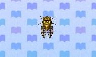 Walker cicada encyclopedia (New Leaf)