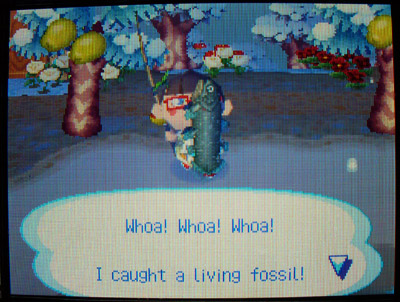 Weather | Animal Crossing Wiki | FANDOM powered by Wikia