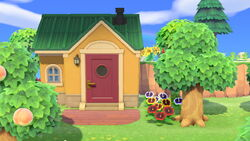 Stiches house