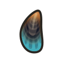 NH-Icon-mussel