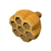NH-Wasp nest