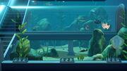 NH Aquarium Second Room