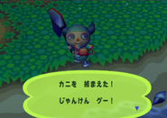 Crab (Animal Forest e+ caught)