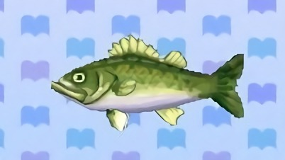 Image result for animal crossing sea bass
