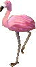 Mrs. flamingo NL