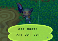 Bee (Animal Forest e+ caught)