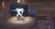 K.K Slider in WW 6