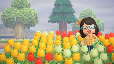 Animal-crossing-new-horizons-field-of-flowers feature