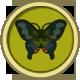 Peacock Butterfly (City Folk)
