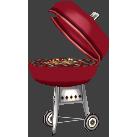 File:Barbecuecf.png