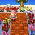Wateringflowers.jpg