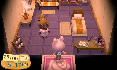 Dream Suite | Animal Crossing Wiki | FANDOM powered by Wikia