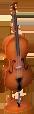 Cellonl
