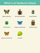 Sunbust Island Bugs