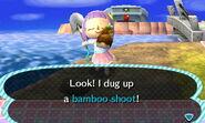 Dug up a bamboo shoot