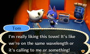 Tom ACNL Camping