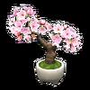 NH-Furniture-Cherry-blossom bonsai