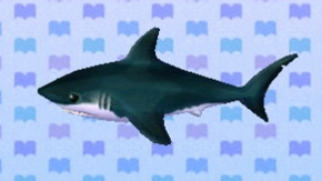 Tiburón NL