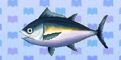Tuna encyclopedia (New Leaf)