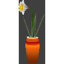 File:Daffodilcf.png