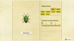 NH-encyclopedia-Stinkbug