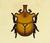 Escarabajo astado elefante NH