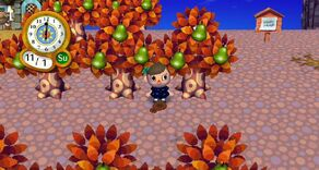 AnimalCrossing049