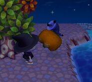 Halloween-Jack04