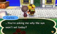 Curlos' Summer Solstice