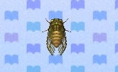Evening cicada encyclopedia (New Leaf)