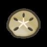 Icono Dólar de arena NH