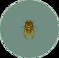 Walker Cicada (City Folk)