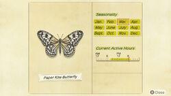 NH-encyclopedia-Paper kite butterfly
