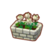 PC-FurnitureIcon-potted white clovers