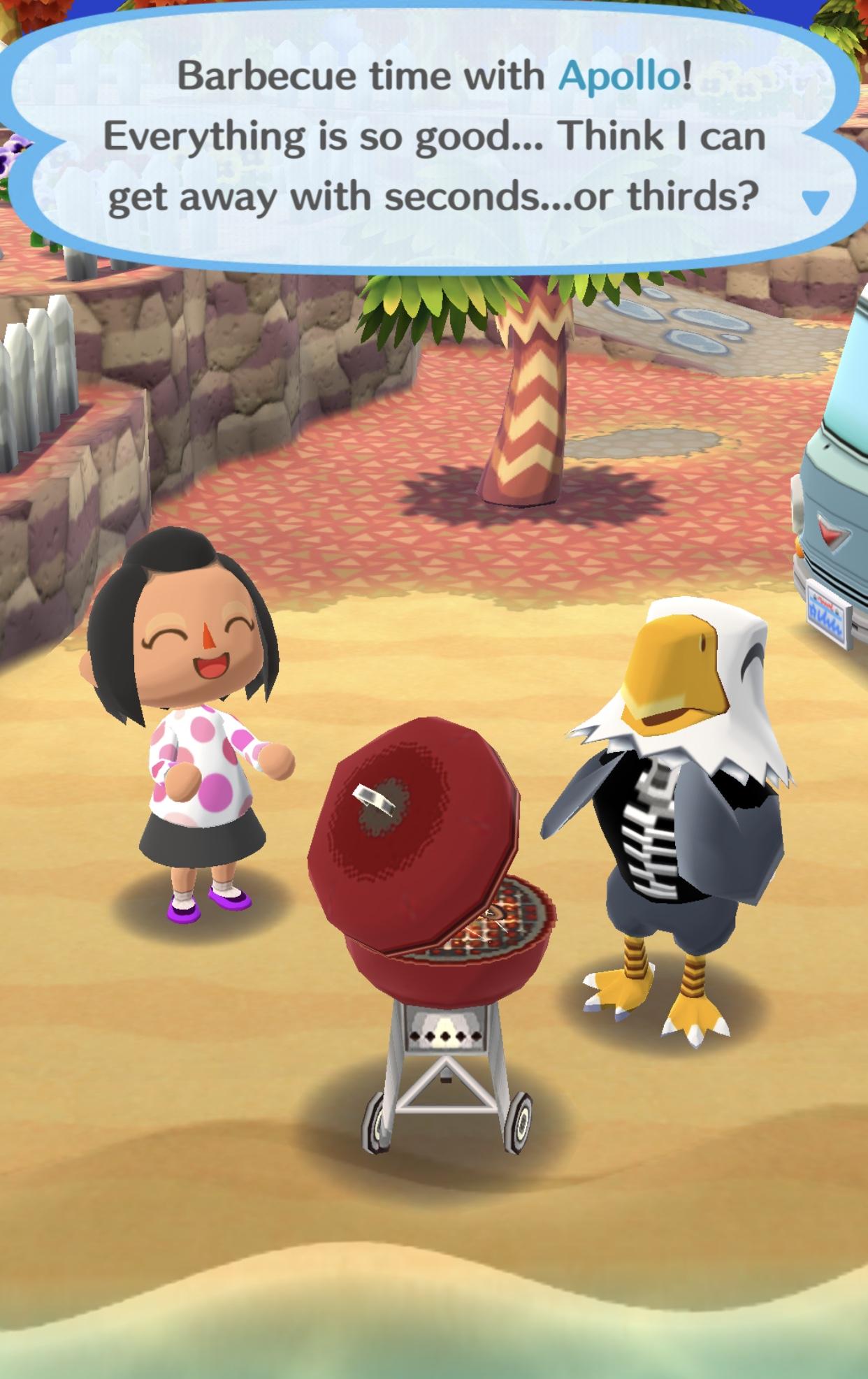 Apollo Animal Crossing Wiki Fandom Powered By Wikia