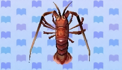 Spiny lobster encyclopedia (New Leaf)