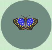 Purple emperor butterfly Animal Crossing